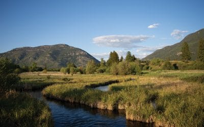 The Flathead Lakers' Bad Rock Canyon Conservation Project